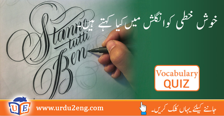 Setback Urdu Meanings