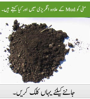 Malice urdu meaning for Soil dictionary