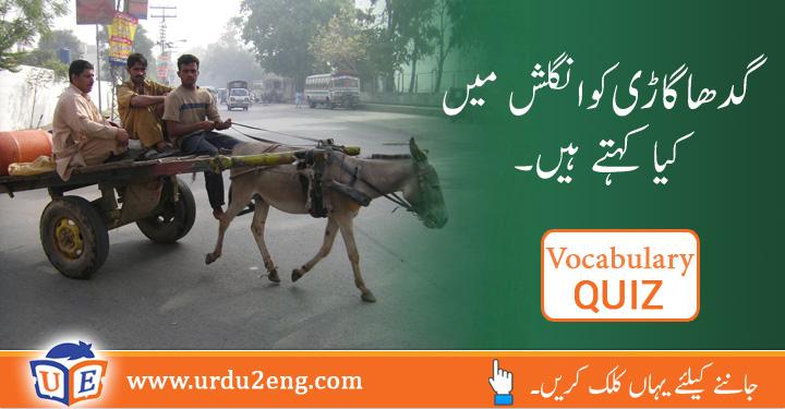 donkey cark