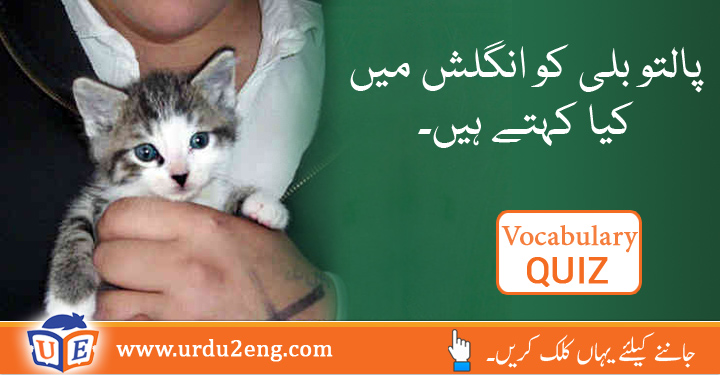 English To Urdu Dictionary Manx