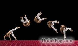 acrobat Urdu Meaning