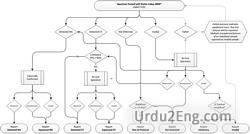algorithm Urdu Meaning