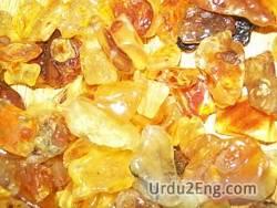 amber Urdu Meaning