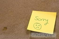 apology Urdu Meaning