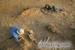 archeologist Urdu Meaning