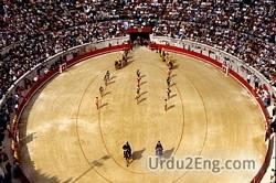 arena Urdu Meaning