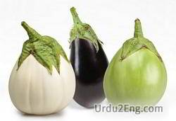 aubergine Urdu Meaning