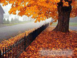 autumn Urdu Meaning