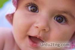 baby Urdu Meaning