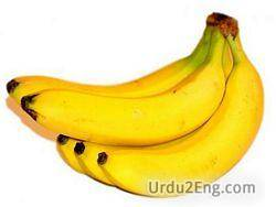 banana Urdu Meaning
