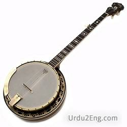 banjo Urdu Meaning