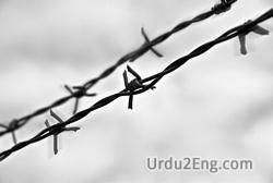 barbwire Urdu Meaning