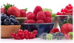 berry Urdu Meaning