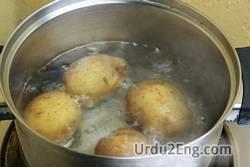 boil Urdu Meaning