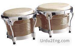 bongo Urdu Meaning