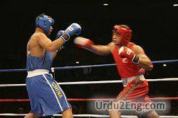boxer Urdu Meaning