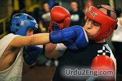 boxing Urdu Meaning