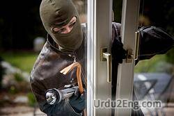 burglary Urdu Meaning