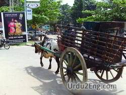 cart Urdu Meaning