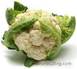 cauliflower Urdu Meaning