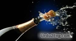 celebrate Urdu Meaning