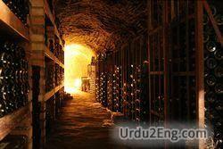 cellar Urdu Meaning