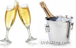 champagne Urdu Meaning