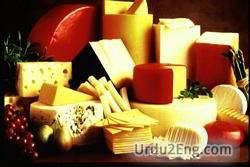cheese Urdu Meaning
