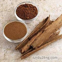 cinnamon Urdu Meaning