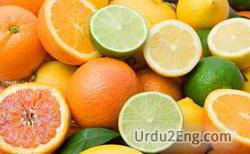 citrus Urdu Meaning