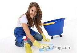cleanup Urdu Meaning