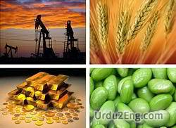 commodity Urdu Meaning