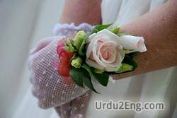 corsage Urdu Meaning