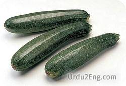 courgette Urdu Meaning