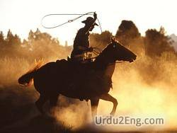 cowboy Urdu Meaning