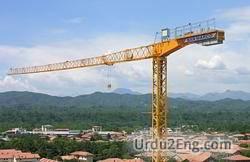 crane Urdu Meaning