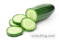 cucumber Urdu Meaning