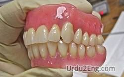 denture Urdu Meaning