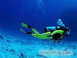 diver Urdu Meaning