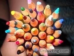diversity Urdu Meaning