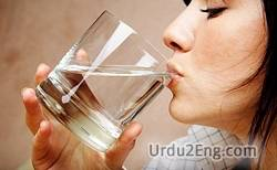 drinking Urdu Meaning