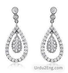 earring Urdu Meaning