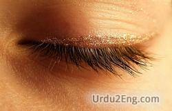 eyelid Urdu Meaning