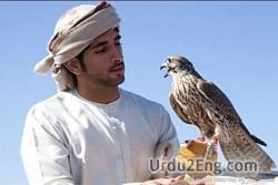 falconry Urdu Meaning