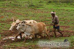 farmer Urdu Meaning