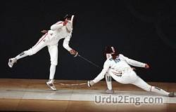 fencing Urdu Meaning