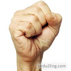 fist Urdu Meaning