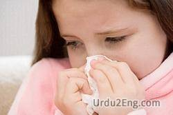 flu Urdu Meaning