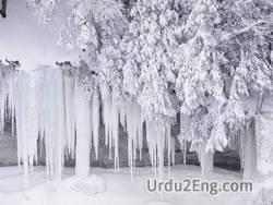 frost Urdu Meaning