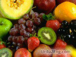 fruit Urdu Meaning